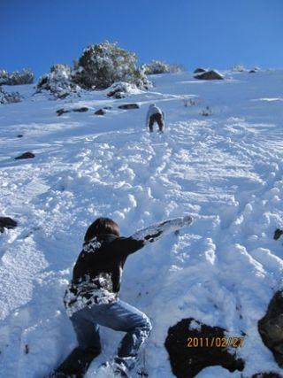 ヨッパ最終日 雪山へ子供と 099