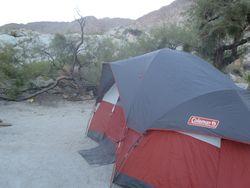 Anza Borego Camp 011